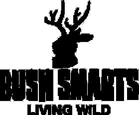 bushsmarts_logo